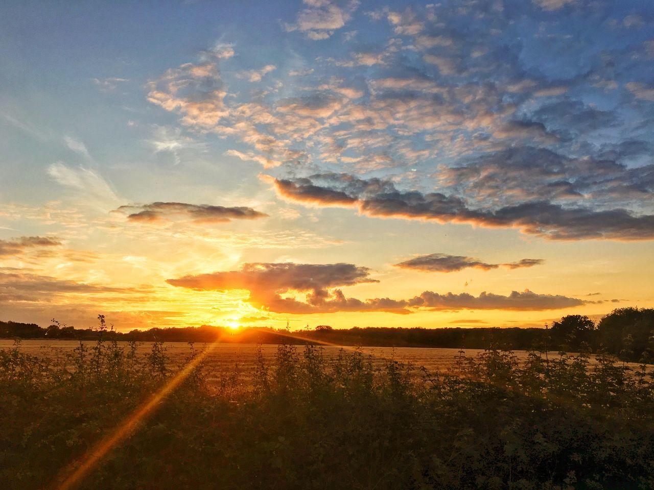 sky, sunset, cloud - sky, scenics - nature, beauty in nature, tranquil scene, tranquility, landscape, environment, nature, sunlight, sun, no people, orange color, field, idyllic, land, non-urban scene, plant, sunbeam, outdoors, lens flare, bright