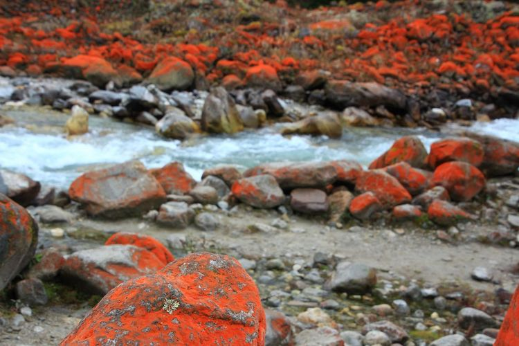 The way forward Streaming China Nature Nature Photography Rocks Colorful Wonderful Beautiful Amazing Amazing View Photography ASIA Scenics - Nature Beauty In Nature Scenics Mountain Rocks Redstone Destination Places ASIA Countryside Outdoors Blur Water Autumn Red Beach Rock - Object Landscape