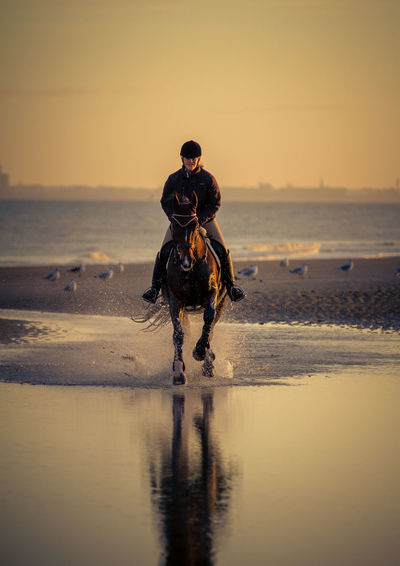 Mid adult woman horseback riding at beach against sky during sunset