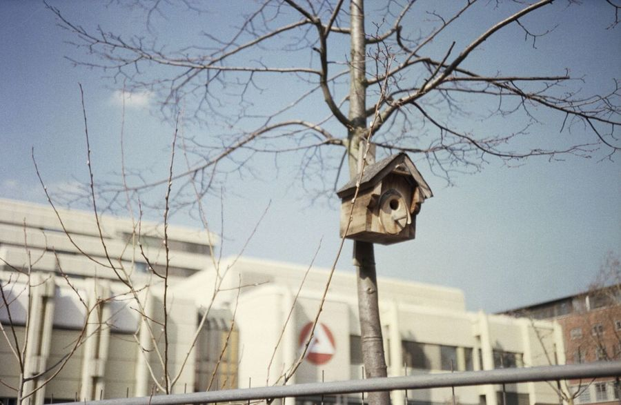 A Ludwigshafen Architecture Street Filmisnotdead Film Photography Film