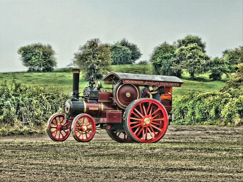 Great Dorset Steam Fair Great Day Out Steam Traction Engine Relaxing Taking Photos Transportation