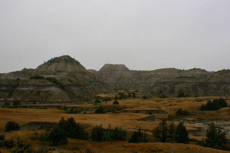 Amber Grassland, Theodore Roosevelt National Park Theodore Roosevelt National Park North Dakota Badlands Mountains