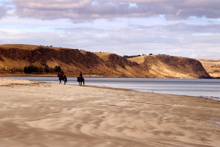 Men riding horses at beach against cloudy sky
