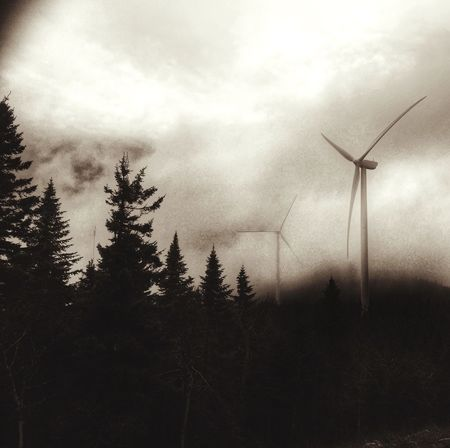 Blackandwhite Wind Turbine Forest Maine