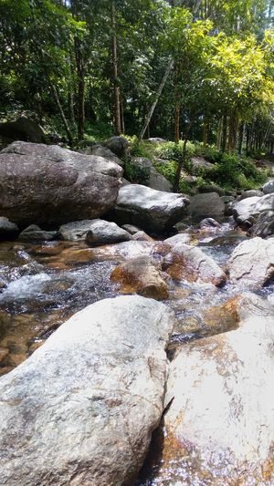 Waterfall in the jungle Nature Outdoors Day Water Tranquility Sand No People Beach Tranquil Scene Beauty In Nature Tree Close-up Picnic Holiday Leave Rocks And Water Beauty In Nature Tree Tranquility Nature Jungle Trips Freshness Jungle