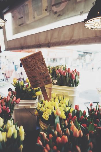 Fresh tulips at flower shop