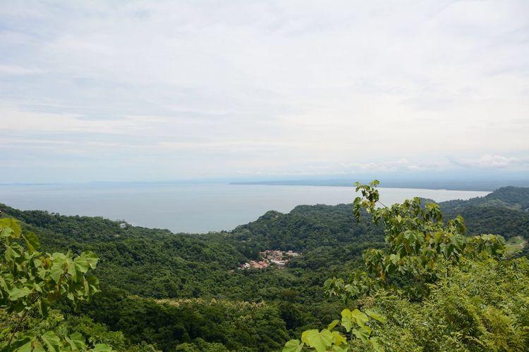 Idyllic shot of green landscape by sea against sky