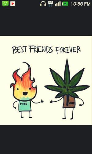 Forever C;