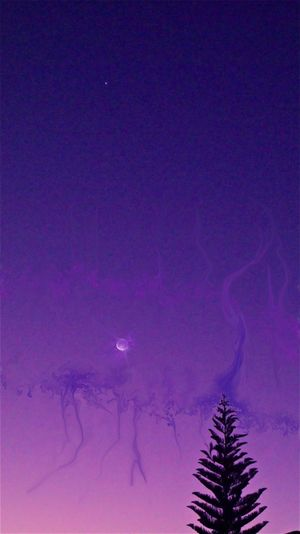 CGI Dark Glowing Gradiented Sky Moon Night Photo Photo Manipulation Purple Sky
