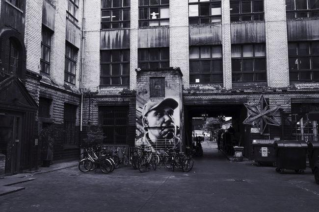 BERLIN BACKYARD