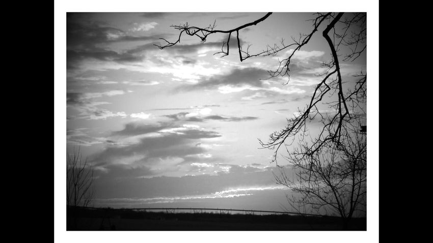 Eyem Sunset Sun Lake Reflection Blackandwhite Auto Post Production Filter Transfer Print Sky Bare Tree Branch Cloud - Sky Cloud Silhouette Tree Tranquility Tranquil Scene Tree Trunk Scenics Nature Beauty In Nature Majestic Day Outdoors Cloudy Calm