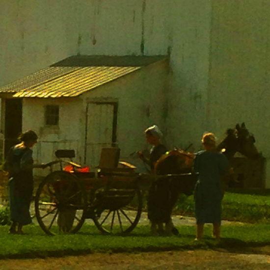 Rural Amish Family Barn Lifestyles Outdoors Lebanon Valley Pa.