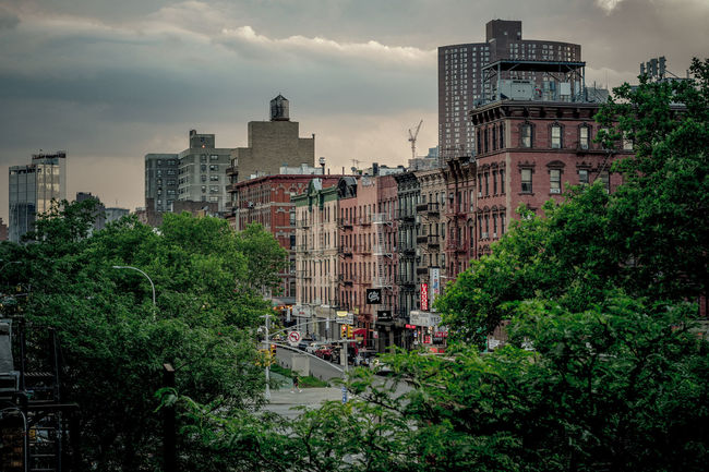 Allen Street and Delancey Street, Lower East Side Apartment Architecture Building Building Exterior Built Structure City Cloud - Sky Day Green Color Growth House Location Nature No People Outdoors Place Plant Residential District Sky Tree