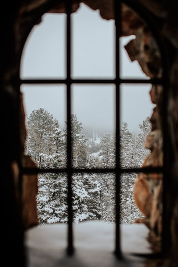 Close-up of window during winter