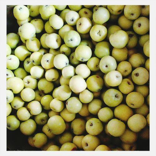 Яблочки?✨❤