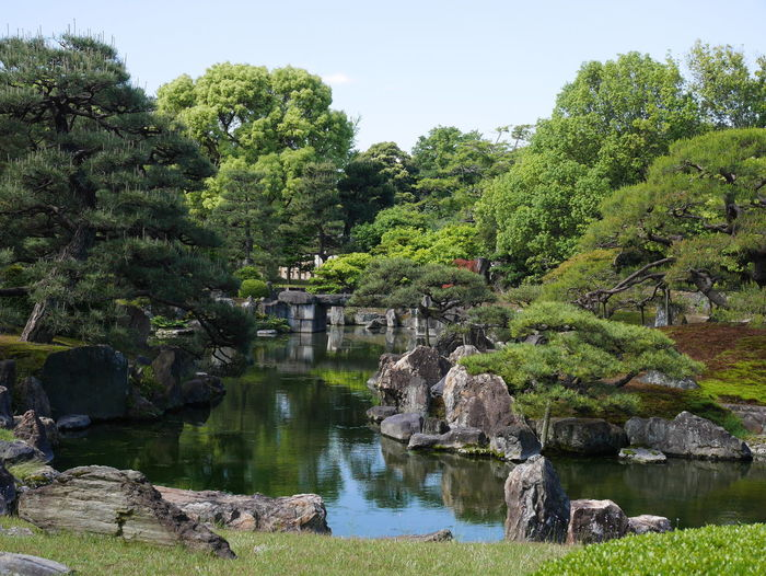 Japan Japan Photography Japanese Garden Kyoto Kyoto,japan No People Garden Springtime Spring Tree Water Sky Green Color