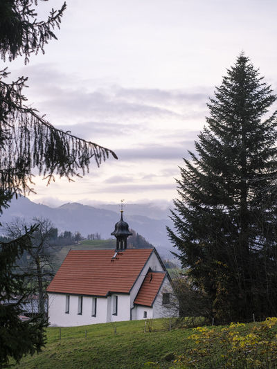Trees and house against sky