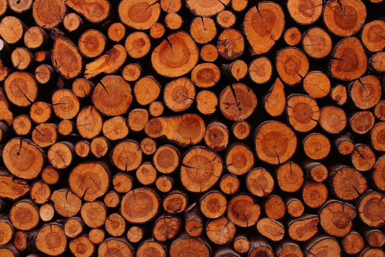 tree log Forestry Industry Woodpile Backgrounds Stack Pattern Timber Hardwood Log Wood - Material Full Frame Deforestation Tree Stump Environmental Damage Environmental Issues Water Pollution Axe Firewood Pile Tree Ring Wood Abstract Backgrounds Plant Bark