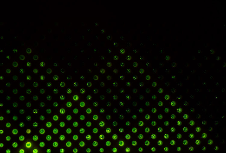 abstract green lights in the dark Abstract Green Lights In The Dark Backgrounds Pattern Full Frame No People Shape Spotted Geometric Shape Abstract Illuminated Defocused Night Circle Design Indoors  Close-up Textured  Lighting Equipment LED Green Color Glowing Black Background Textured Effect Nightlife