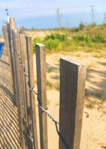 Fence Beach Fence Beachscape Beach Day Beachside Beach Walk Beachphotography Beach