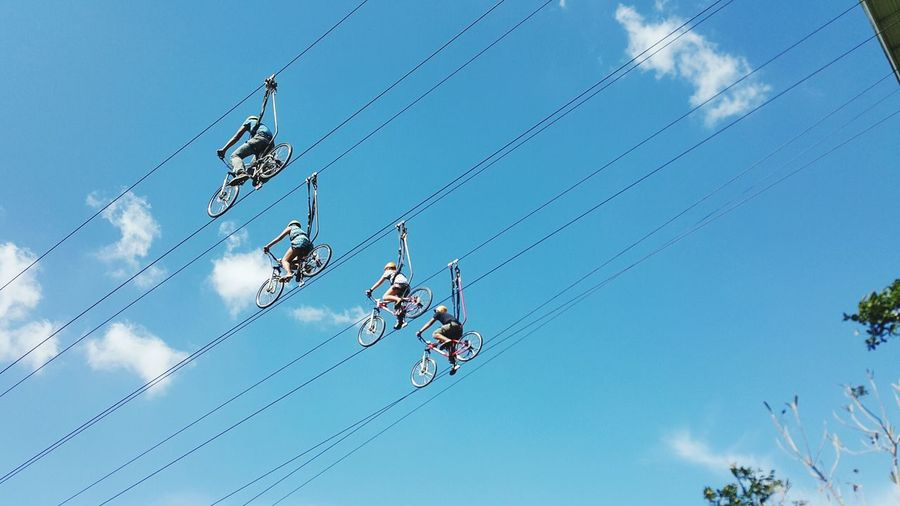 Low Angle View Of People Cycling On Rope At Eden Nature Park And Resort