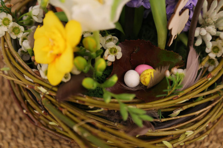 High Angle View Of Easter Eggs In Artificial Nest