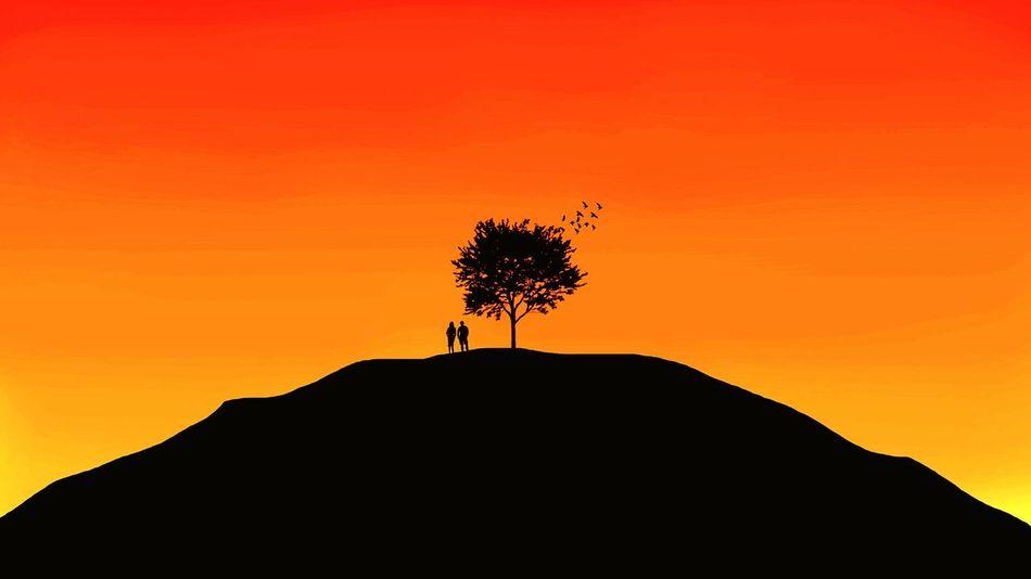 Orange Color Red Color Nature Photography Arboles , Naturaleza Arbol. MaterialDesign First Eyeem Photo