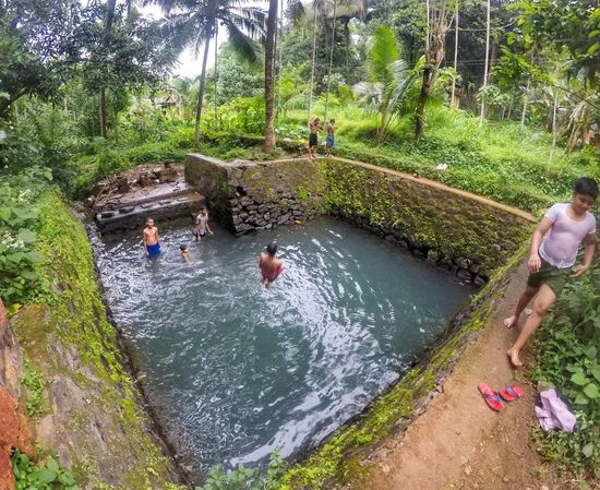 Kids having fun in a natural pond, typical monsoon view in Kerala, India 😄 Water High Angle View Gopro Goprooftheday Outdoors Kids Pond Monsoonseason Fun India Swimming Beauty In Nature Wide Angle EyeEmNewHere NOMAD Travel Nature Green Color Breathing Space The Week On EyeEm