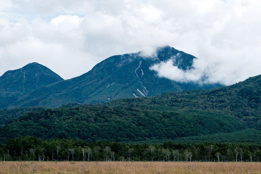 Cloud Green Color Japan Marshland  Mountain Nikon D5500 Tochigi 日本