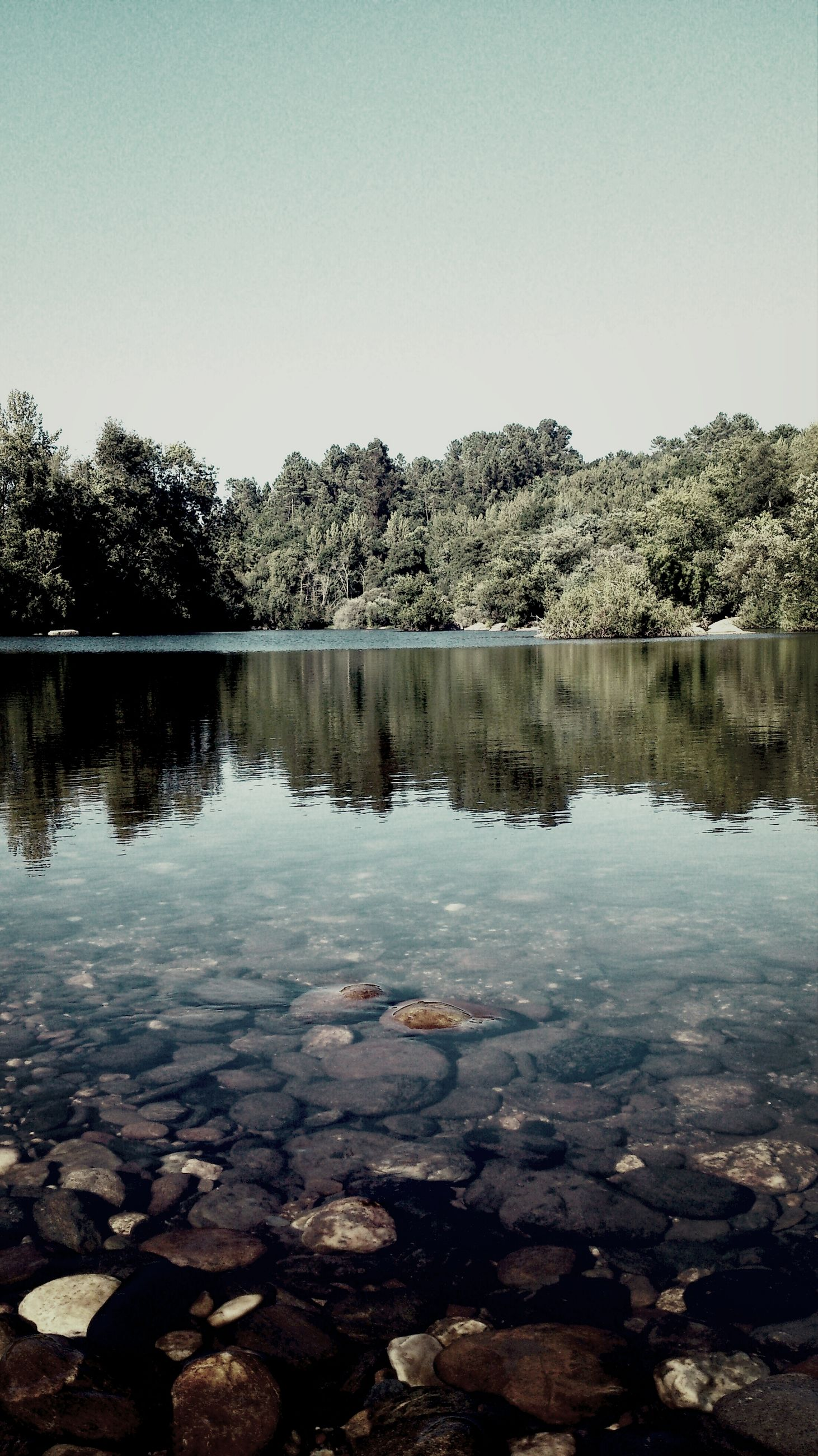 water, clear sky, reflection, lake, rock - object, tranquility, tranquil scene, copy space, scenics, beauty in nature, nature, stone - object, river, sky, tree, outdoors, blue, day, standing water, no people