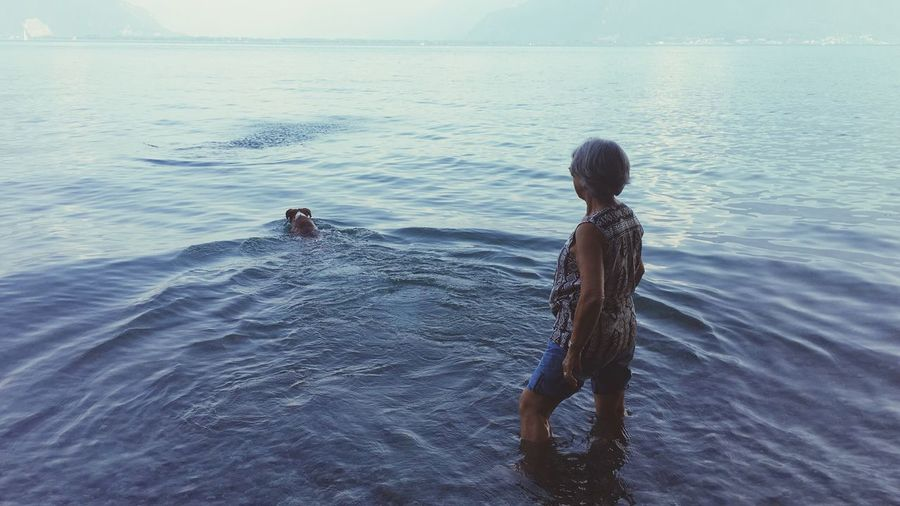 Rear View Of Woman With Dog In Sea