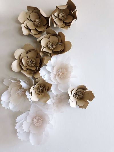 Flowers paper decoration on white backgrounds EyeEm Selects Flowering Plant Flower Plant Indoors  White Color Close-up Fragility No People High Angle View Nature Freshness Art And Craft Vulnerability  Still Life Table Beauty In Nature Large Group Of Objects White Background Directly Above Petal