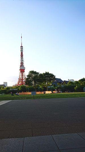 東京タワー 🗼