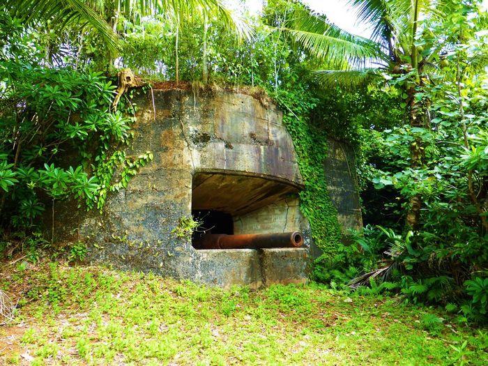Ruins World War