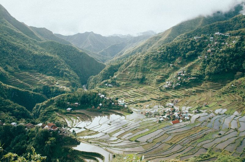 High angle view of rice terraces in philippines