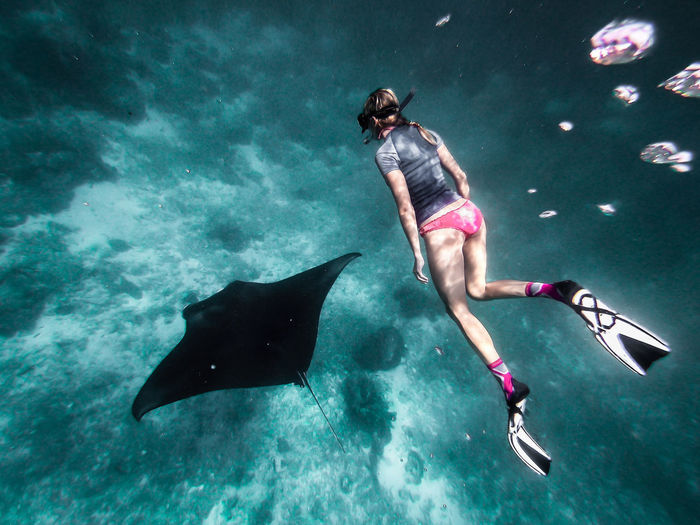 Full length of woman snorkeling by turtle in sea
