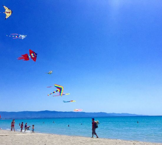 Colour Of Life Beach Sea Sky sardinia Sardinia Cagliari, Sardinia Aquilone Kites On The Beach Freedom Flying