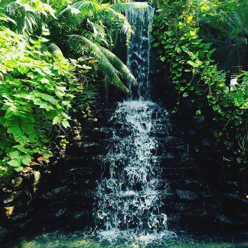 Hotel Laredo Laredo Texas Waterfall