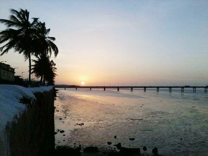 Fim De Tarde Na Av. Beira Mar Beach Sea Water Palm Tree Tranquility Scenics