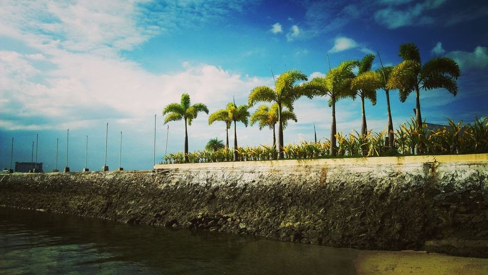 Resort at Samal Island 😍 Water Palm Tree Cloud - Sky Tree Nature Sky First Eyeem Photo