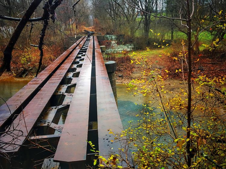 Long forgotten rail road bridge Truss Bridge Trussle Tree Forest Autumn Nature No People Water Beauty In Nature Tranquility Outdoors Fog Landscape Day
