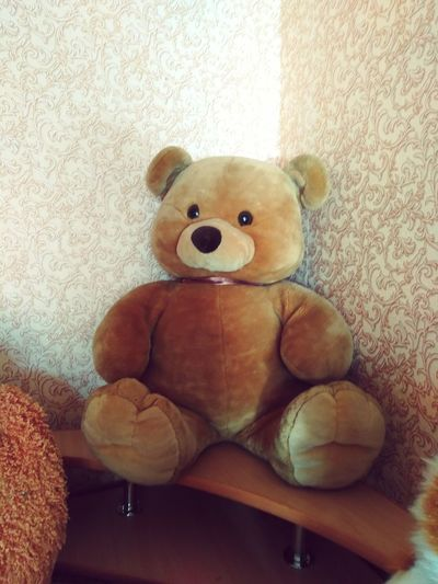 Teddy Bear Happiness Day Indoors  Home Interior Stuffed Toy Looking At Camera Portrait Brown No People Close-up First Eyeem Photo