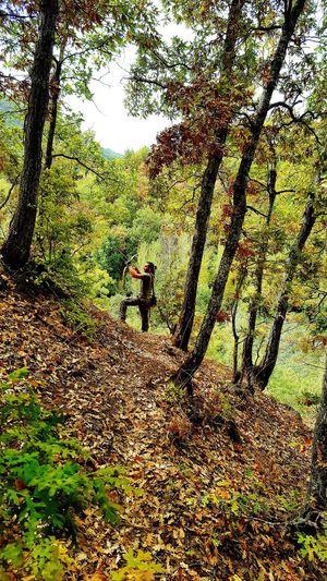 ok ve yay Gelenekseltürkokçuluğu Gelenekselokçuluk Turkey Orman Forest Hanting Treaking Okculuk Archery Traditional Bow Arrow Malatya Türkiye Kocyigit Only Men Ok Yay Okcu Full Frame Day Outdoors Sunlight Shadow Nature Sky
