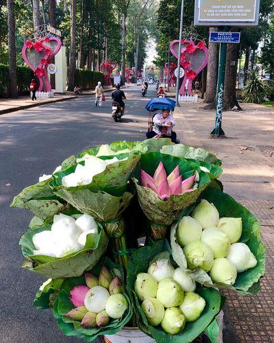Lotus flowers 💐 Selling Flowers Lotus Flower Flower Freshness Day Plant Wellbeing