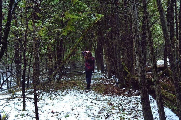 Sømetımes quıet ıs vıølent Best Friend Trees Forest Fading Light