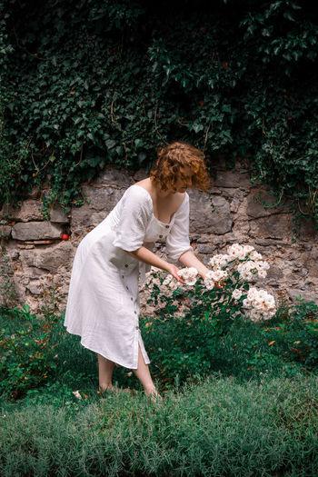 Woman picking white roses in garden