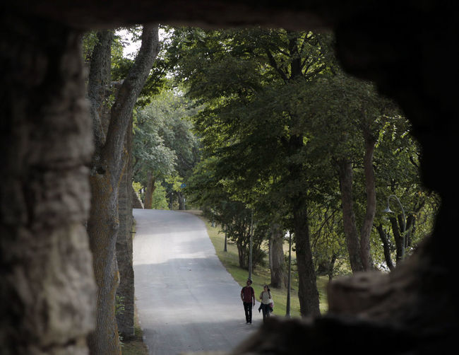 Beauty In Nature Nature Outdoors Photo Through Old Ruins Tree Two People Walking Your Ticket To Europe