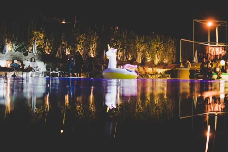 Unicorn Celebration Decoration Glowing Illuminated Lighting Equipment Night Reflection Swimming Pool Tree Water Summer In The City Capture Tomorrow