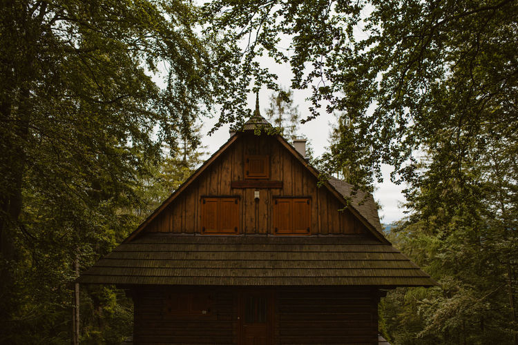 Low angle view of cottage amidst trees in forest