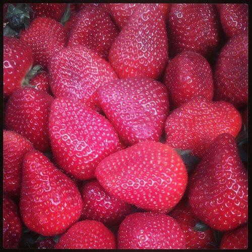 morangos fresquinhos! Morango Morangos Strawberries Strawberry Pattern Groceries Grocerie Compras